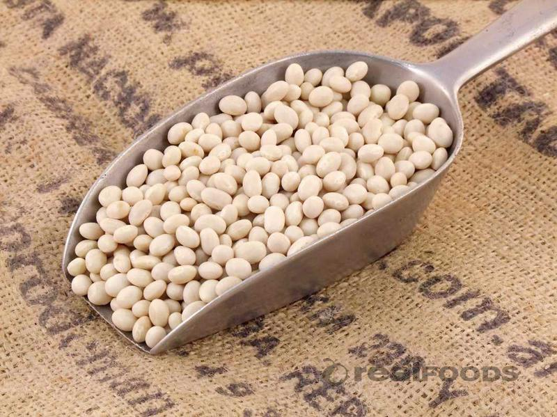 Haricot Beans ORGANIC