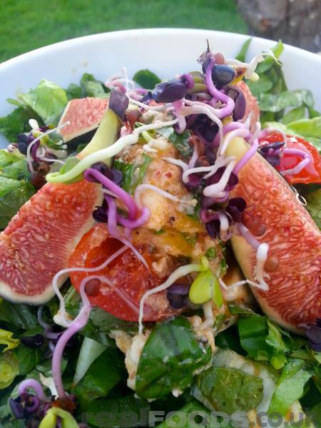 Vegetarian Cherry Tomato, Mozzarella And Fig Salad Recipe