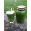 Raw Ultimate Green Juice Recipe thumbnail image