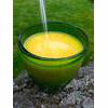 Raw Apple And Orange Breakfast Juice Recipe thumbnail image