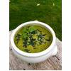 Raw Vegan Alkalising Green Soup Recipe thumbnail image