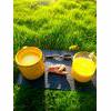 Vegan Naturally Sweetened Turmeric Rice Milk Recipe thumbnail image