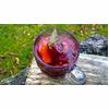 Alcohol Free Christmas Mulled Grape Juice Recipe thumbnail image