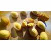 French Madeleines Recipe thumbnail image
