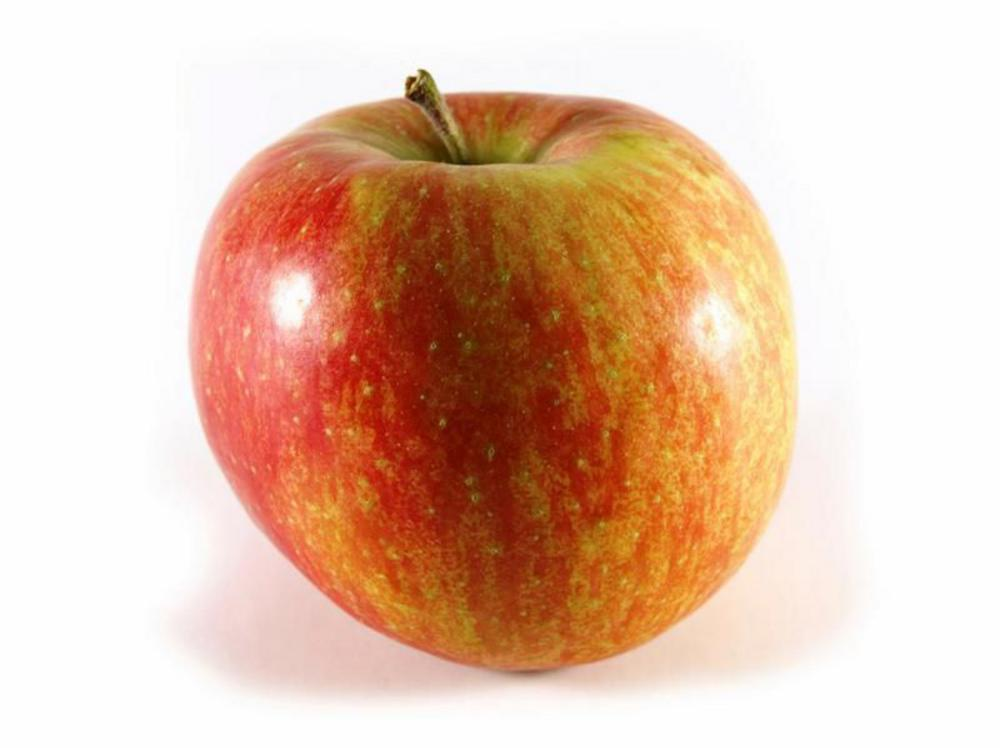 Real Foods Organic Apples Elstar