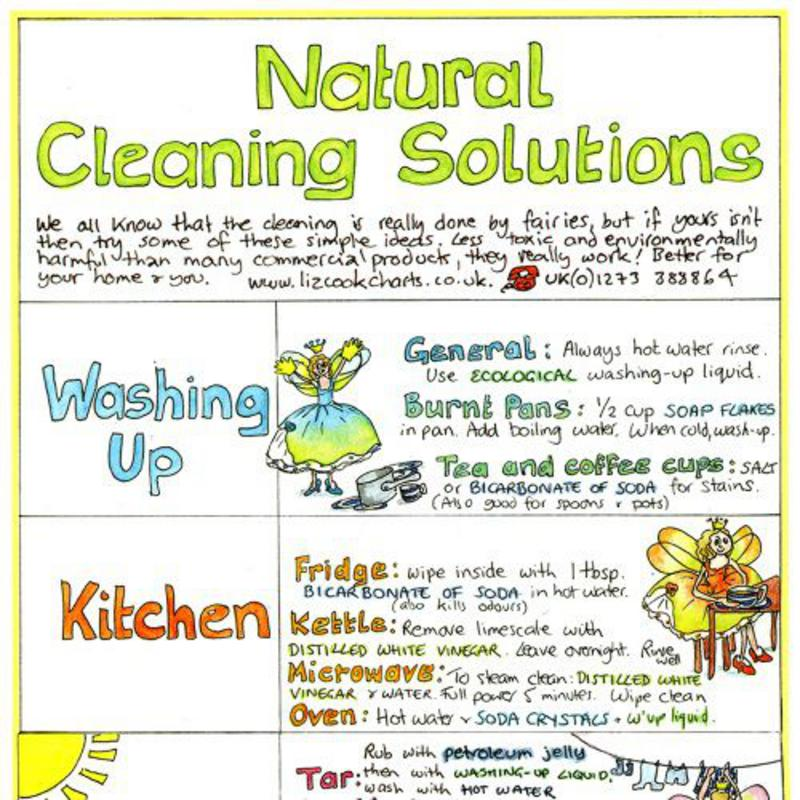 Eco-friendly-cleaning-liz-cook-chart