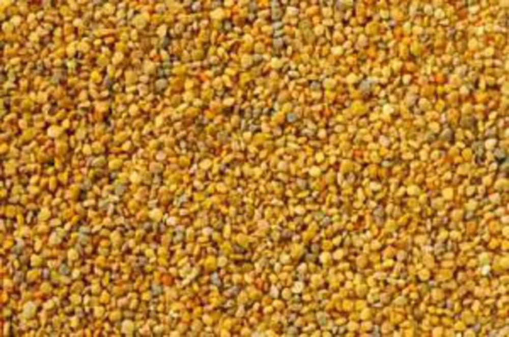 Bee Pollen From Real Vitality Superfoods