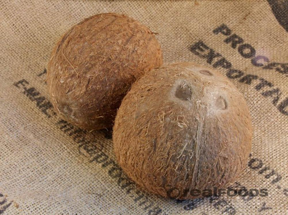 organic fresh coconut from Real Foods webshop