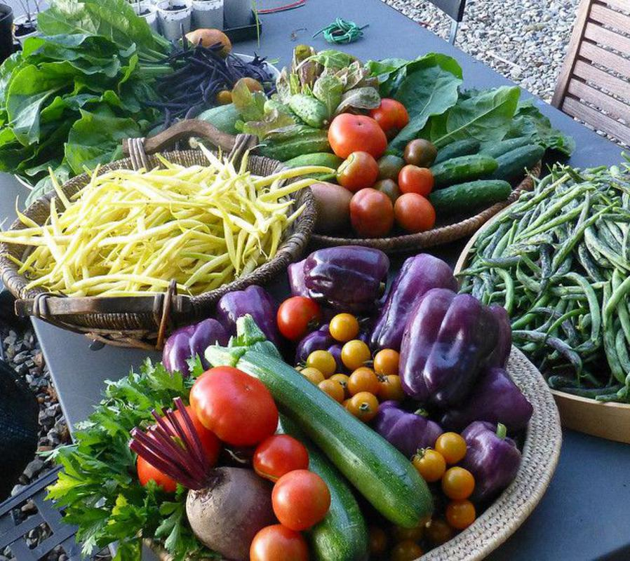 A selection of veggies in baskets