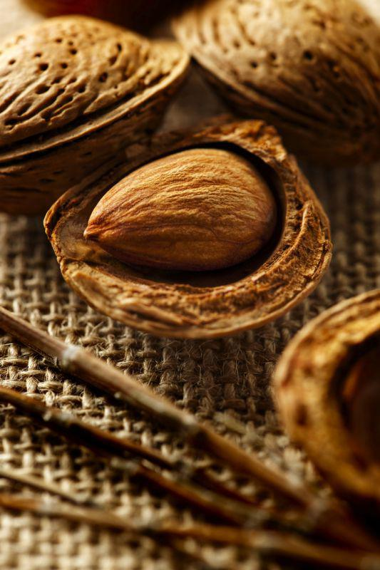 Almonds in shells - could cause reaction in people with nut allergies