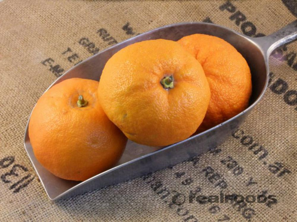 Organic Seville Oranges from Real Foods