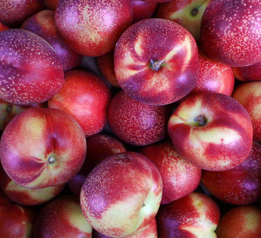 Real Foods Organic Nectarines