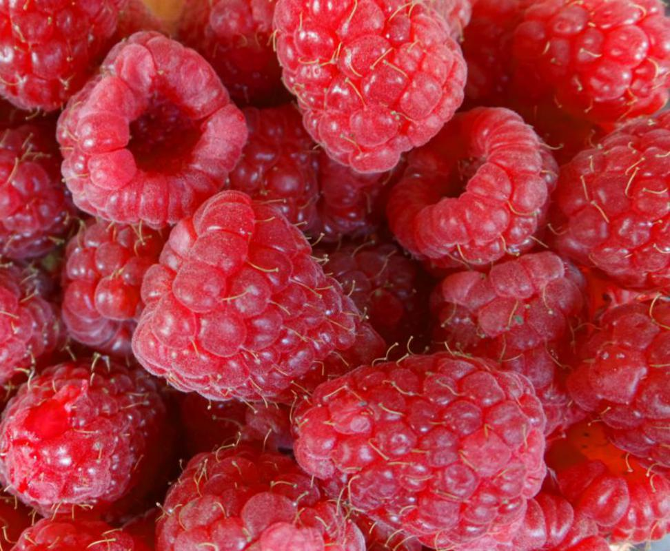 Real Foods Organic Raspberries