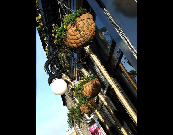 Hanging baskets outside pub